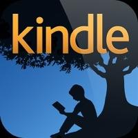 Kindleで本を読んだら予想以上に快適でびっくりした3つのこと