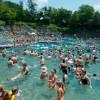 休日の朝のプールは人でいっぱいだった