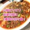 ピリピリしびれる麻婆豆腐と2種類の担々麺がたまらない 幕張本郷 蔓山