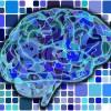 情報統合理論で意識の謎がついに科学的に解明されるかも