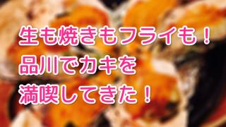 【品川 カキ ジャックポット】生も焼きもフライもうまい!カキざんまいしてきた!